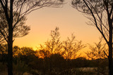 Orange sunset in the outback of the Northern Territory in Australia