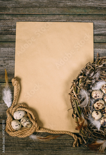 Closeup bird nest with quail eggs and feather beside sheet of paper for text on wood background.