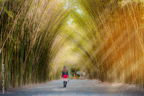 Fotobehang Bamboe Woman tourists walk the bamboo tunnel.
