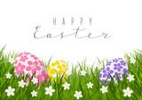 Easter eggs on green grass - 197493962