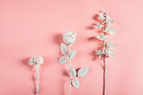Three white flowers on a pink background - 197514591