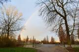 Fototapeta Rainbow - Tęcza nad drzewami w parku, zima © Ewa