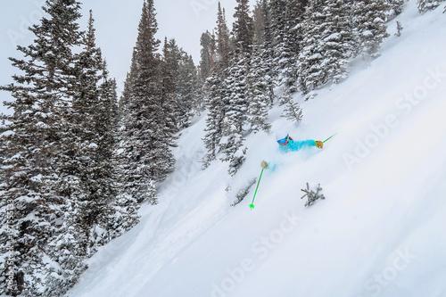 obraz lub plakat Female Skiing Deep Snow