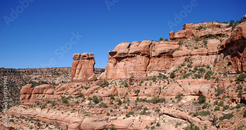Plexiglas Zalm Canyon country red rock and blue sky in the Bears Ears wilderness in Southern Utah.