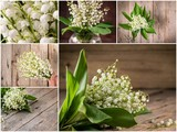 Collage of flowers lily of the valley.
