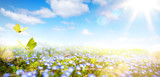Easter background with fresh spring flowers- 197607159