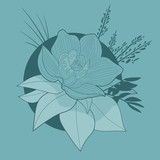 Beautiful Orchid Flower on blue background design element