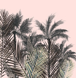 Beautiful tropical vector illustration with palm plants - 197628949