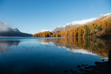 Herbstwald am See