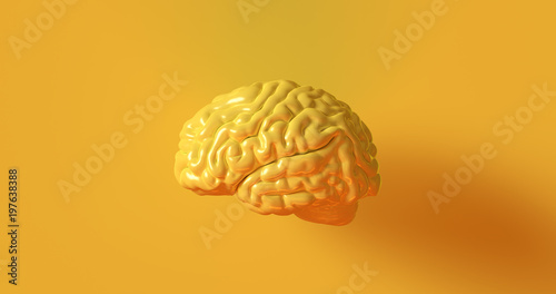 Yellow Human brain Anatomical Model 3d illustration