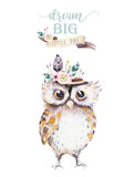 Cute bohemian baby owl animal for kindergarten, woodland nursery isolated decoration forest owls illustration for children forest animals pattern. Watercolor hand drawn boho set - 197669754