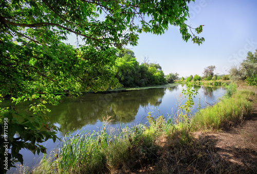 River with green trees on the beach