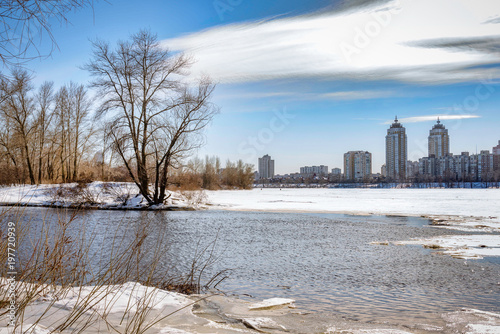 Foto op Plexiglas Kiev View of willow trees and poplars close to the River in Kiev during winter.Buildings in the background.