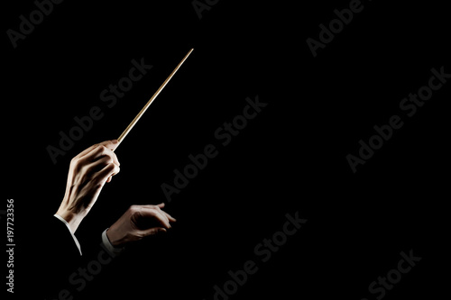 Orchestra conductor music conducting. Hands of conductor with baton - 197723356