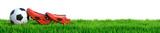Fußball und Fußballschuhe auf Rasen Panorama isoliert weißer Hintergrund 3D Rendering