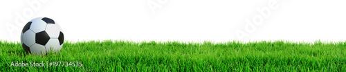 Leinwandbild Motiv Fußball auf Rasen Panorama isoliert weißer Hintergrund 3D Rendering