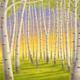 Digital illustration of beautiful birch forest at sunset
