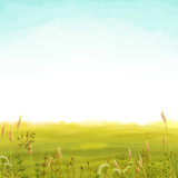 Digital illustration of soft green meadow and blue sky background