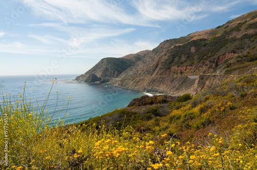 Big Sur Landscape