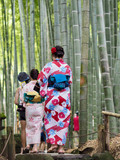 Bambus Wald Kimono Spaziergang