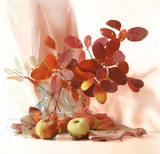 Autumn still life with apples and red leaves on a light background