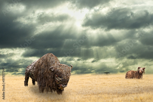 Aluminium Bison Iron buffalo made of iron scrap walking in dry prairie watched by a wild ram from distance. Open plain landscape with Amercian bison