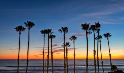 Orange sunset over the ocean with palms