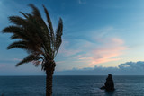 Landscape with a palm tree and one rock plunged in the water against the blue sky with pink clouds. - 197853901