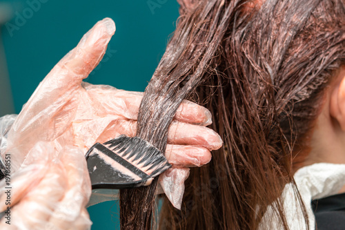 Professional hairdresser coloring hair. Closeup.