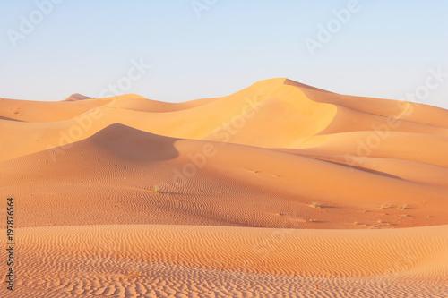 Fotobehang Abu Dhabi Dune Landscape in the Empty Quarter