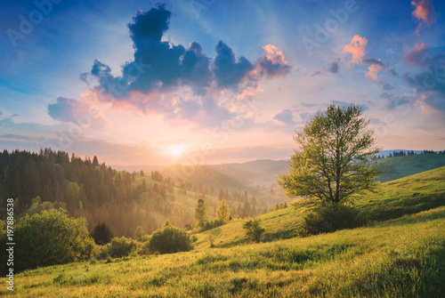 Foto op Canvas Herfst Beautiful nature of Carpathians