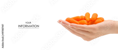 Foto op Aluminium Verse groenten Small carrot many in hand pattern