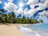 Ferien, Tourismus, Sommer, Sonne, Strand, Meer, Glück, Entspannung, Meditation: Traumurlaub an einem einsamen, karibischen Strand :) - 197919373