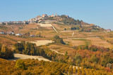 La Morra town on hill surrounded by fields, vineyards, woods in a sunny autumn day in Italy