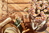 Potted pink daises, gardening tools and sunhat