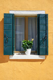 Window with green shutters and yellow flowers in the pot.  Traditional colorful walls and windows. Italy, Venice, Burano
