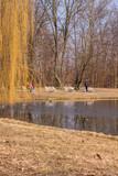wiosenny staw w parku