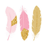 Cute poster with pink and gold glitter feathers. Vector hand drawn illustration. - 197951577