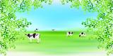 牛 牧場 風景 背景  - 197967716