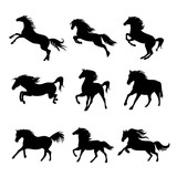 Horse Animal Silhouette Black Icon Flat Design Element Vector Illustration - 197968319
