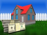 3d dollars over grass and fence