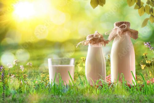 Organicznie mleko na trawie w pogodnej łące z kwiatami
