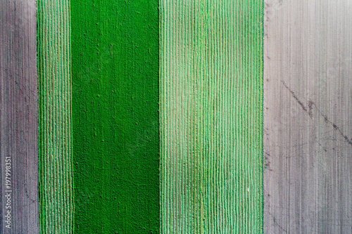 Fotobehang Groene Top view of agricultural parcels