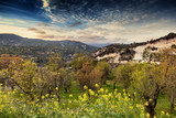 Beautiful scenery, a bright sunset in the mountains on the island of Cyprus, Troodos, a popular destination for travel in Europe
