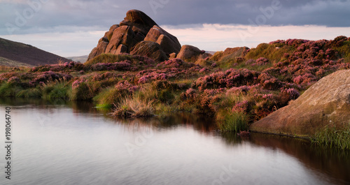 In de dag Chocoladebruin Sun setting onthe heather at Doxey pool on The Roaches