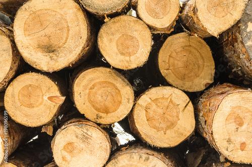 Foto op Aluminium Brandhout textuur Drewna