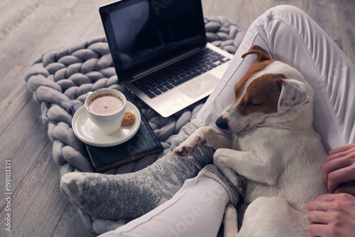Woman in cozy home wear relaxing at home ,drinking cacao, using laptop. Soft, comfy lifestyle.