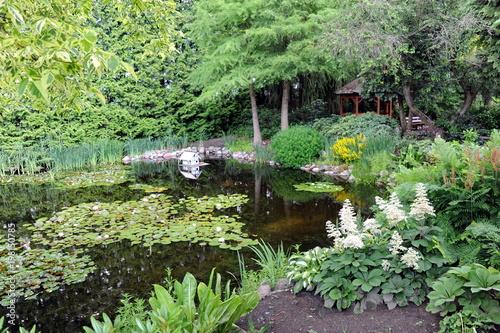 In de dag Olijf Seerosenteich im botanischen Garten Christiansberg