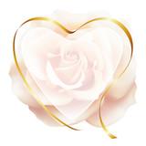Realistic pink tea color rose, romantic frame, heart.