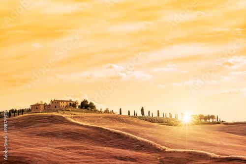 Aluminium Toscane Beautiful typical landscape of Tuscany at sunset, Italy